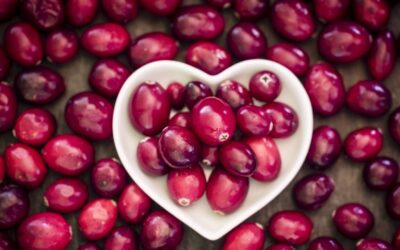 A dietitian on the gut health benefits of cranberries